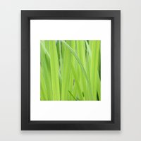 Mystic Green Framed Art Print