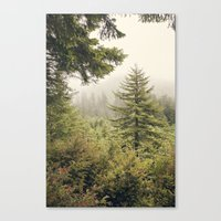 Into The Mist Canvas Print