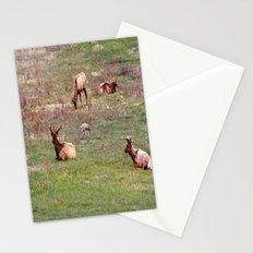 Brave Little Guy Stationery Cards