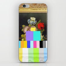 A Painting of Flowers With Color Bars iPhone & iPod Skin