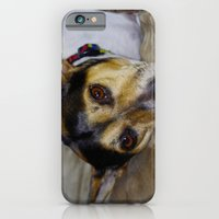 iPhone & iPod Case featuring Terrier by Rick Kirby
