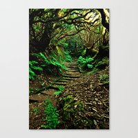 Forest Secrets Canvas Print