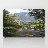 Mountain Stream iPad Case