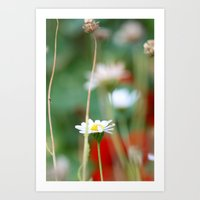 red and green depth of field  Art Print