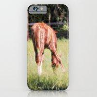 Horses Feeding In A Fiel… iPhone 6 Slim Case