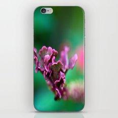 Meanderings iPhone & iPod Skin