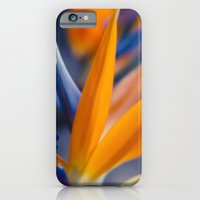iPhone & iPod Case featuring Ecstatic Motion by Sharon Mau