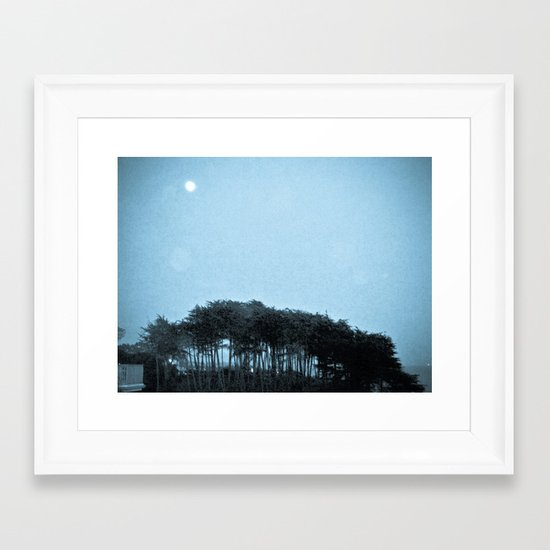 Blue Cypress Framed Art Print