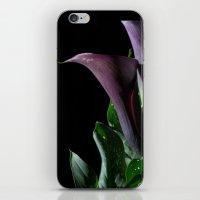 The Calla Purple 4 iPhone & iPod Skin