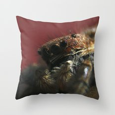 Spider on Red Throw Pillow