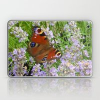 A Peacock Butterfly On A Laveder Bush Laptop & iPad Skin