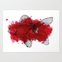 big red fish Art Print