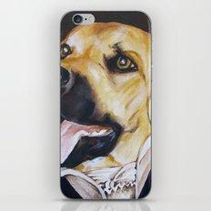 Mans Best Friend - Dog in Suit iPhone & iPod Skin
