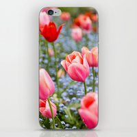 Keukenhof Tulips - Amsterdam iPhone & iPod Skin