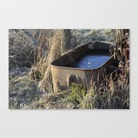 Water Trough  Canvas Print