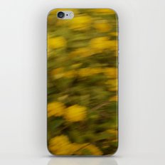 Golden Brush iPhone & iPod Skin