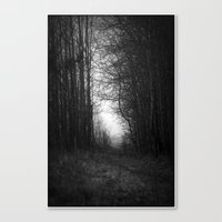 In The Deep Dark Forest.… Canvas Print