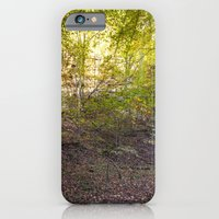 Morning Light In The For… iPhone 6 Slim Case