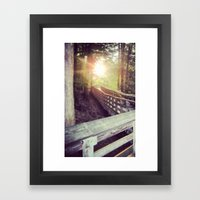 Sun In The Park Framed Art Print