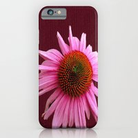 iPhone Cases featuring Echinacea on Canvas Texture by Bella Mahri