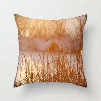 Winter Swamp Sun Rays Throw Pillow