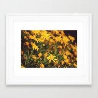 Sigue el camino de margaritas amarillas Framed Art Print