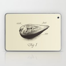 Fig 1 Laptop & iPad Skin