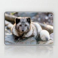 Vulpes Lagopus Laptop & iPad Skin