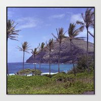 Hawaii Heaven Canvas Print