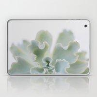 succulent 05 Laptop & iPad Skin