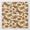 Moth Pattern Canvas Print