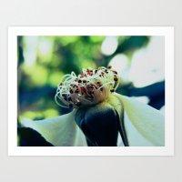 Disheveled flower Art Print