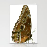Beautiful Butterfly Wings of Meadow Brown Isolated Stationery Cards