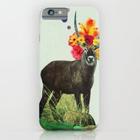 I've Been Searching For … iPhone 6 Slim Case