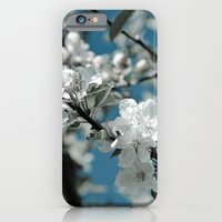 Almond Blossom iPhone 6 Slim Case