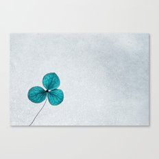 blue clover Canvas Print