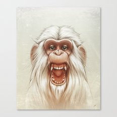 The White Angry Monkey Canvas Print