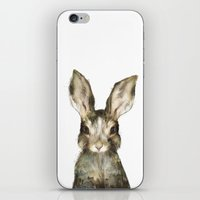 Little Rabbit iPhone & iPod Skin