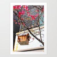 bird house 2 Art Print