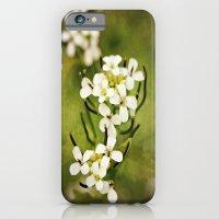 Petals Of White iPhone 6 Slim Case