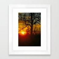 Sunset By The Rhine Framed Art Print