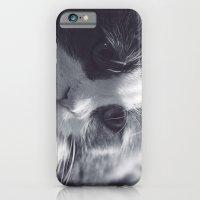 Cat Love iPhone 6 Slim Case