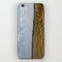 Natural Colors (2) iPhone & iPod Skin