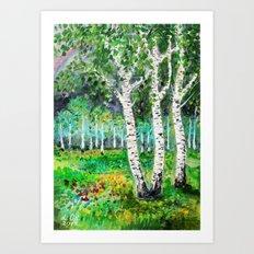 Birch Grove Art Print