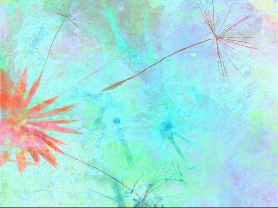 Paint A Dandelion Canvas Print
