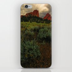 Pike's Meadow iPhone & iPod Skin