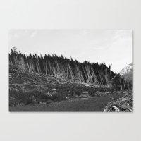 Gone Canvas Print
