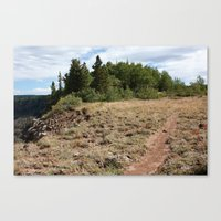 Flowing Park Trail Canvas Print