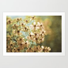 I live in the springtime Art Print