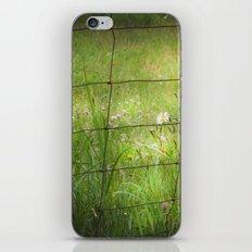 Meadow Flowers iPhone & iPod Skin